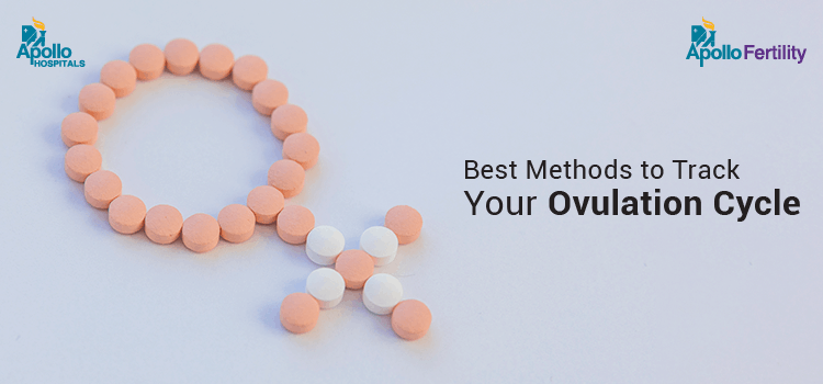 best-method-to-track-your-ovulation-cycle