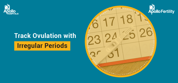 Track Ovulation with Irregular Periods